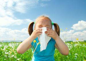 alergijski rinitis2